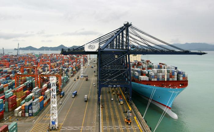 国际货运指定货的操作流程解析: